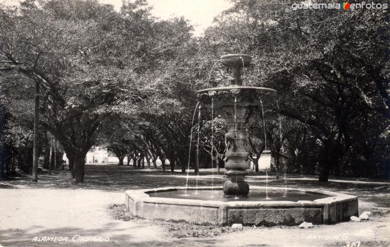 Alameda del Calvario